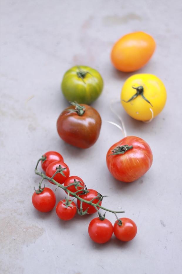 Salade-de-tomates2