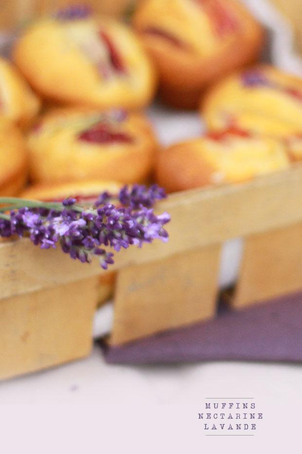 Muffins-nectarine-lavande
