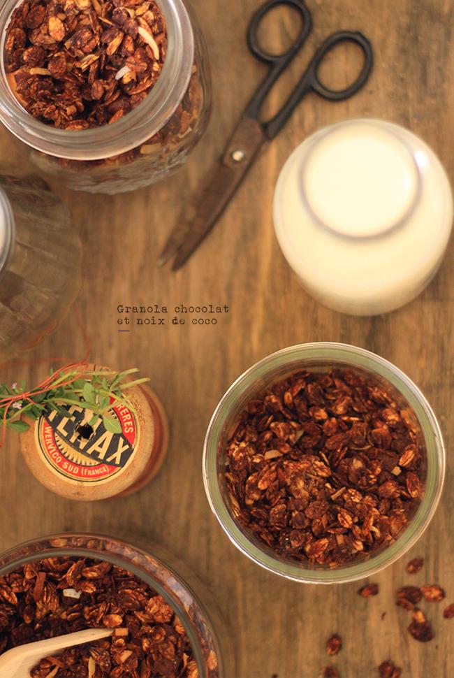 Granolat-chocolat-noix-de-coco3
