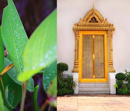 City-Guide-Bangkok_THUMB