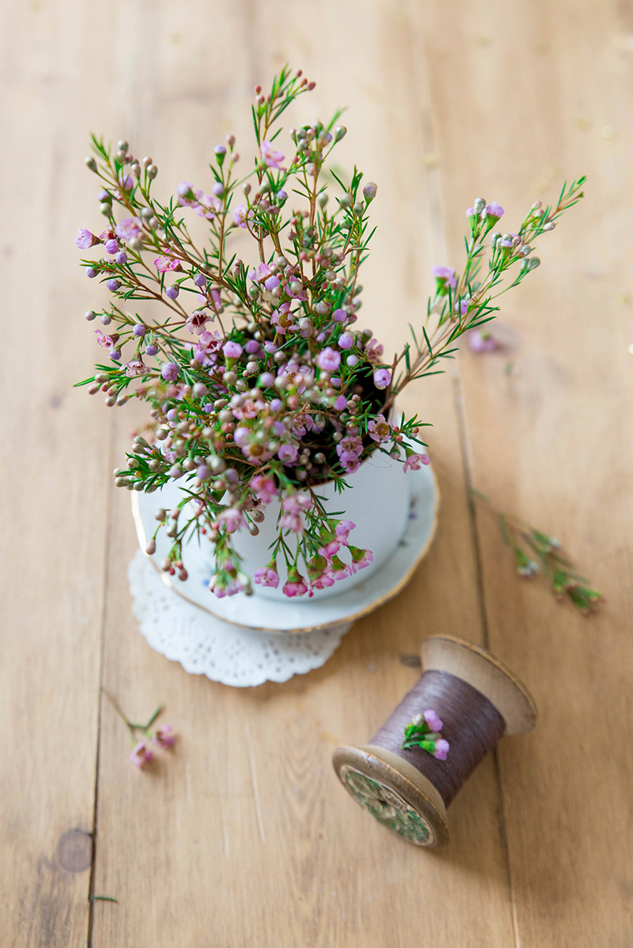 Fleurs ©Fraise & Basilic