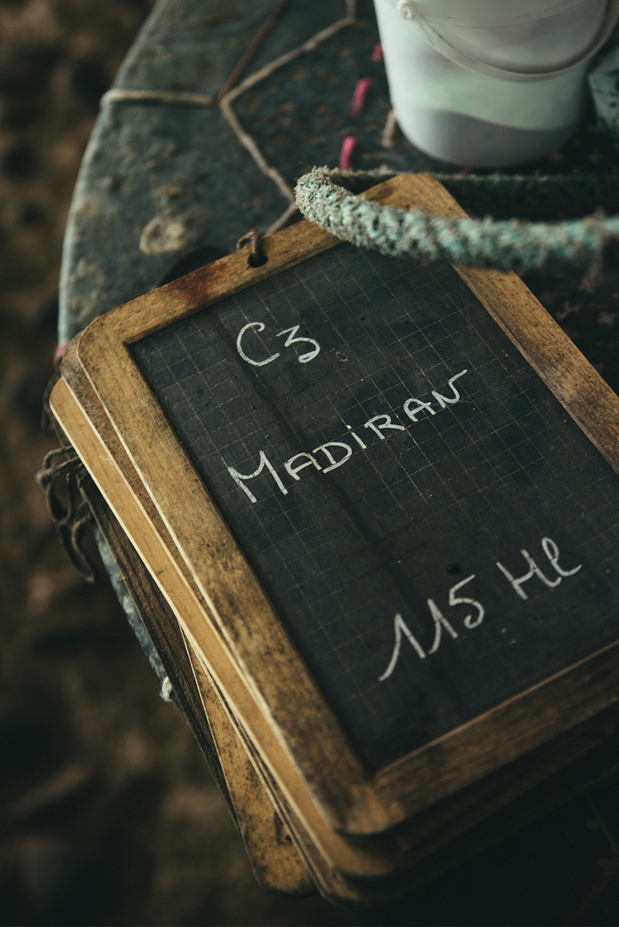 Au coeur du Gers à la découverte du Pacherenc et du Madiran ©Fraise & Basilic
